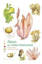 Algues des cotes bretonnes